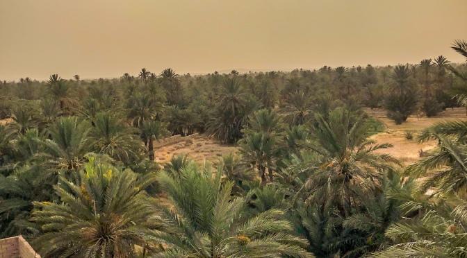 Berberská cesta po jihu Maroka